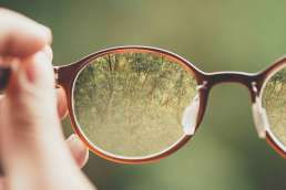 Glasses with focused trees within lens and surrounding background around glasses blurry