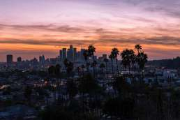 A cityscape with palm trees and a sunset in the background