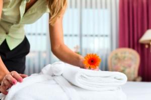 Hotel Concierge/Service
