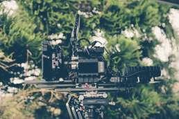 Photo of film camera against blurry foliage background