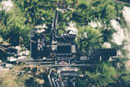 Photo of film camera against blurry foliage background