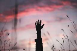 A hand reaching out of tall grass with the sunset behind it