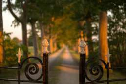 Wrought iron gate with dirt street and trees in the background