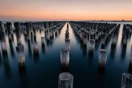 Many logs standing up on end in still water against background of a sunset