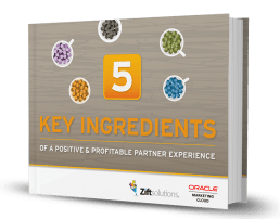 THE 5 KEY INGREDIENTS OF A POSITIVE AND PROFITABLE PARTNER EXPERIENCE