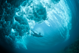 Underwater shot of wave and surfer