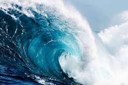 Forrester PRM Wave
