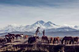 Cowboy and horses with mountains in the background